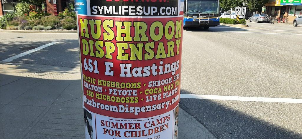 Peyote Mushroom Poster In Vancouver, BC